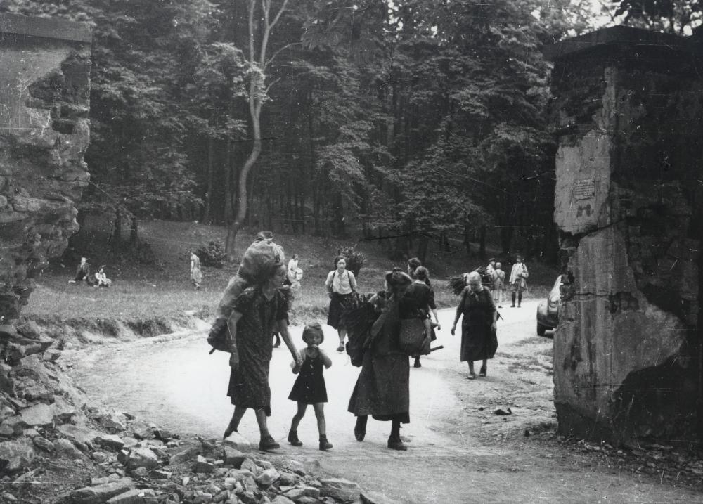 Der Mangel betraf nicht nur Lebensmittel, sondern auch Brennstoffe. HolzsammlerInnen in Parks und Wäldern nahe der Stadt gehörten zum alltäglichen Bild der Nachkriegszeit.